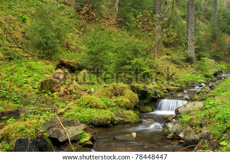 Forest brook running over mossy rocks - stock photo