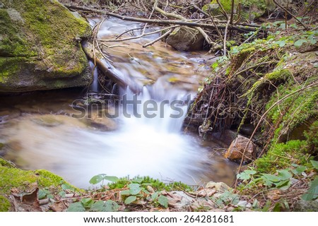 Forest brook waterfall - stock photo