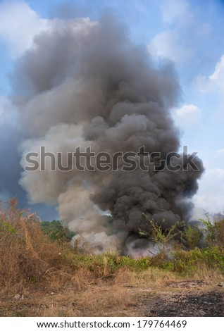 forest fire smoke - stock photo