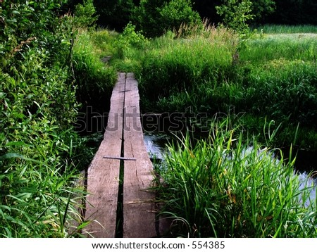 Forest Footbridge - summer landscape - stock photo