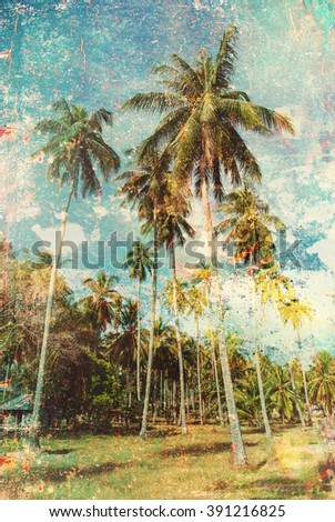 Forest Group Tropical Palm Trees Jungle Toned Vintage Shabby Effect Nature Landscape Background Holiday Travel Design View  - stock photo