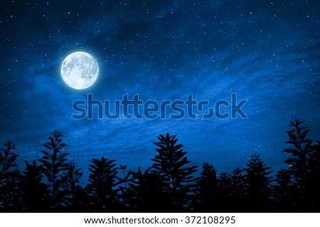 forest in silhouette with starry night sky and full moon , Elements of this image are furnished by nasa - stock photo