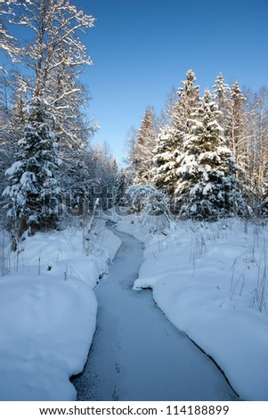 Forest in winter with small river of ford, beautiful Christmas time in Latvia, Baltic states, Europe - stock photo