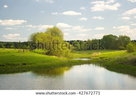 Forest lake and summer time. - stock photo