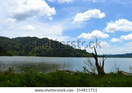 forest lake in a tropical rainforest Malaysia