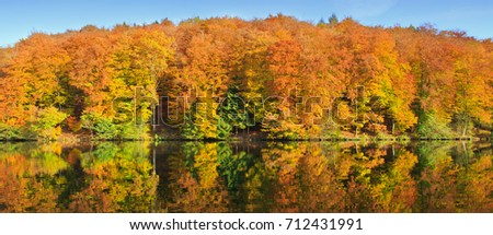 Forest lake in colorful autumn forest.