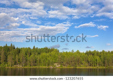 Forest lake. Landscape on a sunny summer day