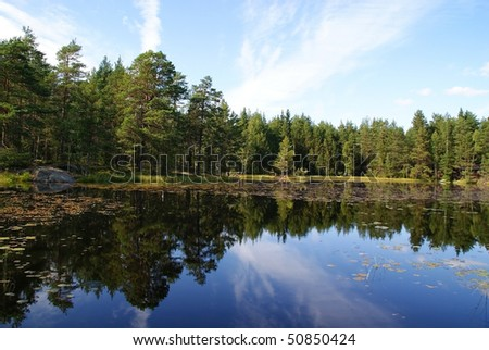 Forest Lake Reflections - stock photo