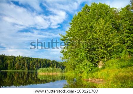 Forest lake, summer landscape - stock photo