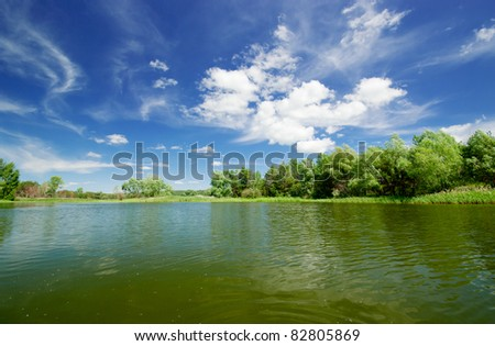 Forest lake under cloudy sky