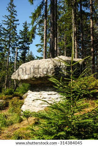 Forest landscape of Table Mountains National Park (Gory Stolowe) in Poland - stock photo