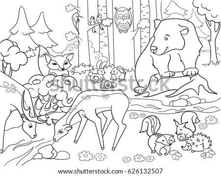 Forest Landscape Animals Coloring Book Adults Stock Illustration ...