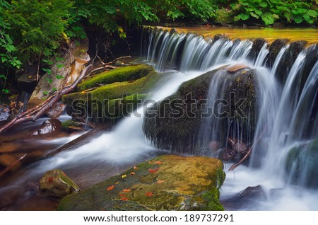 Forest landscape with cascading mountain river. Waterfall in mountain forest. Carpathians, Ukraine - stock photo