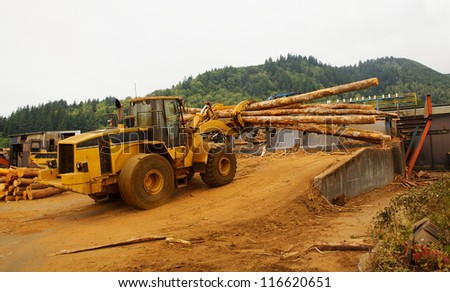 Forest Logging Forklift or mover working loading trees into saw at a lumber mill - stock photo