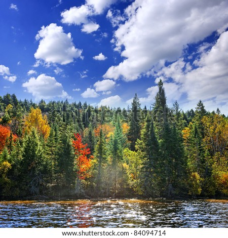 Forest of colorful autumn trees on sparkling lake - stock photo