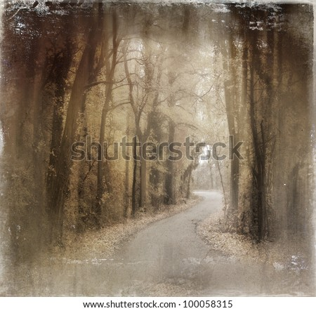 Forest on old photo paper,vintage style - stock photo