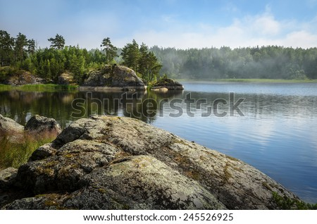 forest on the stones over the lake waters - stock photo
