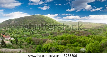 forest panorama - stock photo