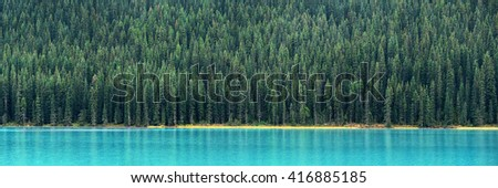 Forest panorama at lake waterfront in Banff National Park, Canada. - stock photo