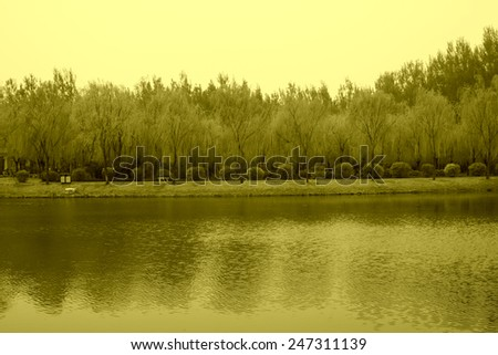 Forest Park water scenery in Luan County, Hebei Province, China - stock photo