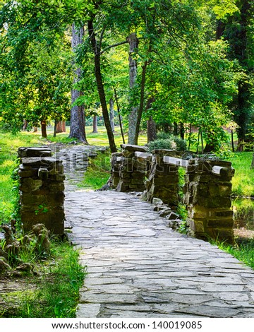 Forest path over bridge during bright spring day - stock photo