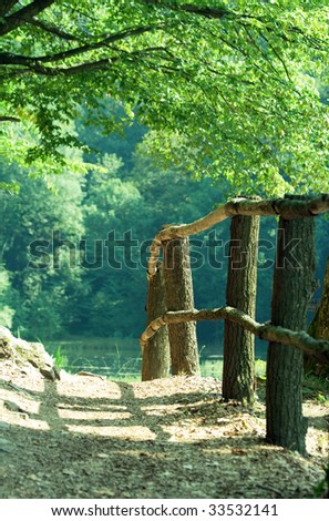 Forest path with fence - stock photo
