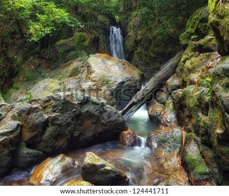 Forest photography, mountain river and creeks with waterfalls beautiful landscape - stock photo