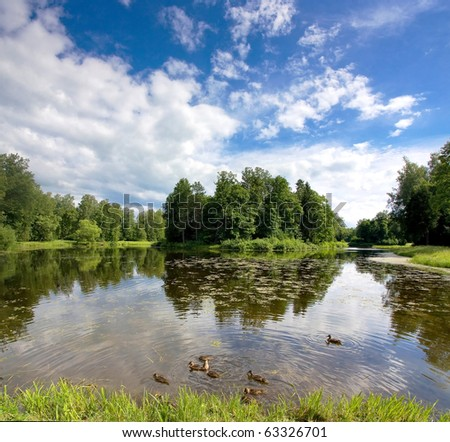 Forest pond and ducks - stock photo