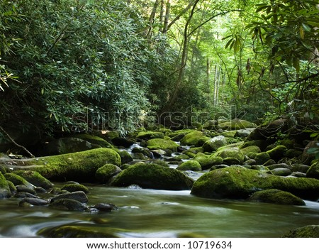 Forest river flowing gently over moss covered rocks - stock photo