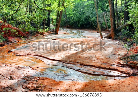 Forest river in canyon - stock photo