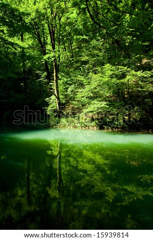 Forest river source scene, Croatia - stock photo