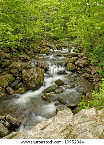 forest river waterfall in the russian primorye reserve - stock photo