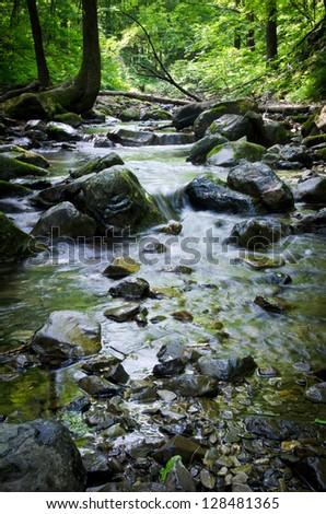 Forest river, wild taiga, brook and stones, Primorskyi krai, Russia - stock photo