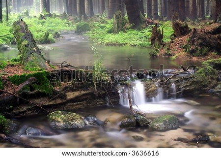 Forest river with waterfall - stock photo