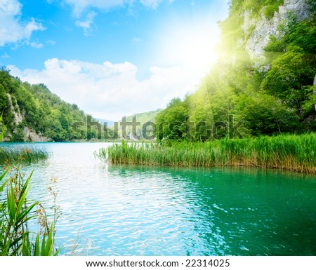 forest rock and lake - stock photo