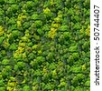 Forest seamless pattern - view from above. - stock