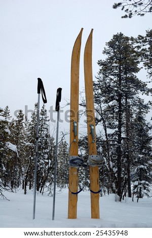 Forest skis very good to have in deep snow