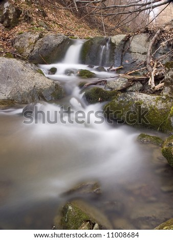 Forest stream - stock photo