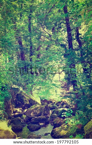 Forest Stream Near the Town of Florac in France, Retro Effect - stock photo