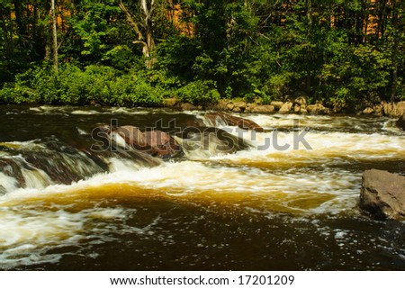 Forest stream running over rocks in the water - stock photo