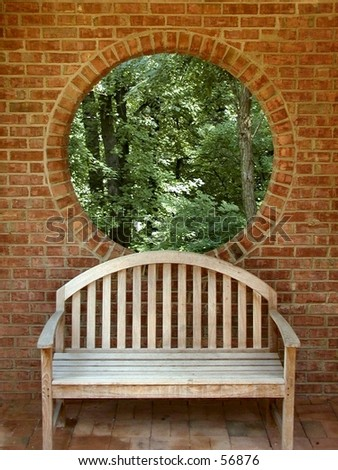 Forest through the window - stock photo