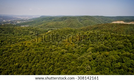 Forest top view - stock photo