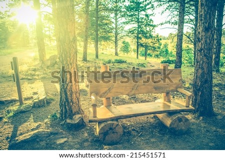 Forest Trail Wooden Bench at Sunset. Summer Hiking in the Colorado.