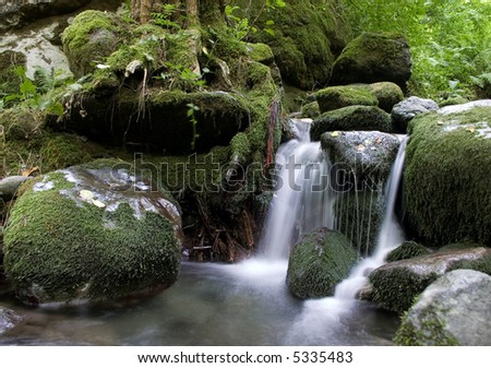 Forest waterfall and stones overgrown with moss.