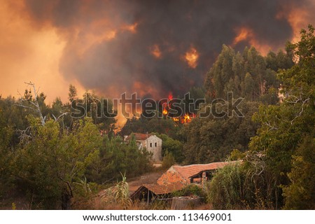 Forest Wild fire near houses on Portugal Summer - stock photo