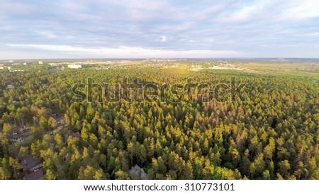 Forest with cityscape on horizon at summer sunny day. Aerial view - stock photo