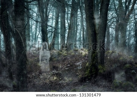 Forest with ghosts - stock photo