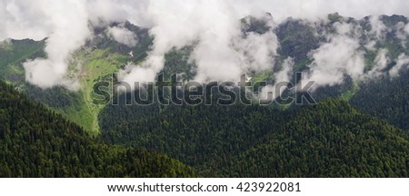 Forested mountain slope in the low-lying clouds with evergreen trees in the fog in a picturesque view of the landscape. View of the mountains in the clouds. Abkhazia.