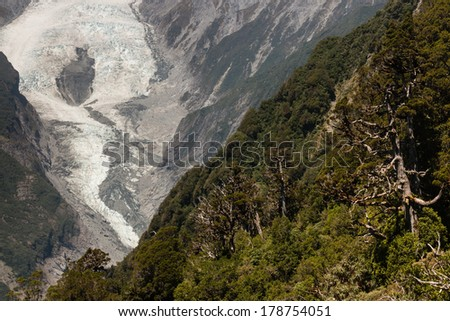forested slopes near Franz Josef Glacier  - stock photo