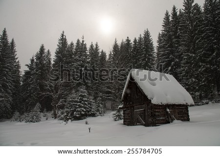 Forester hut - stock photo